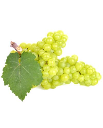 Uva blanco